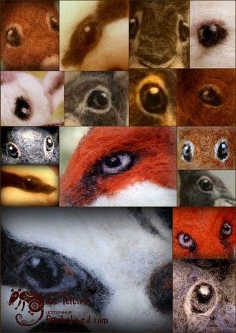 1-eye-collage