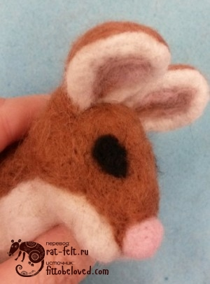 18-mouse-eye1