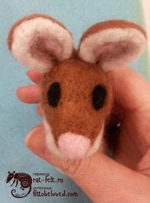 19-mouse-eye2