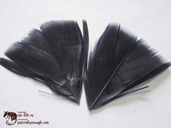 перья для черной совы