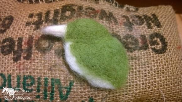 Основной зеленый цвет птицы