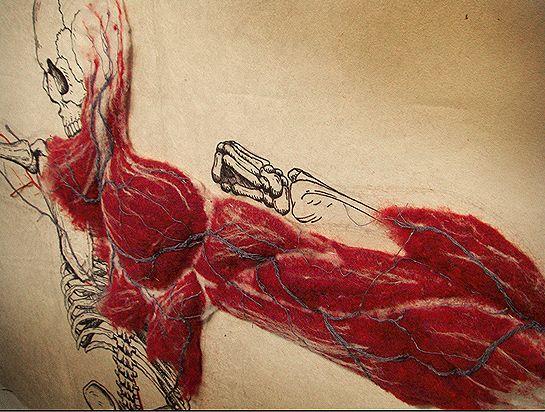 Миниатюра к статье Шерстяная анатомия от Dan Beckemeyer