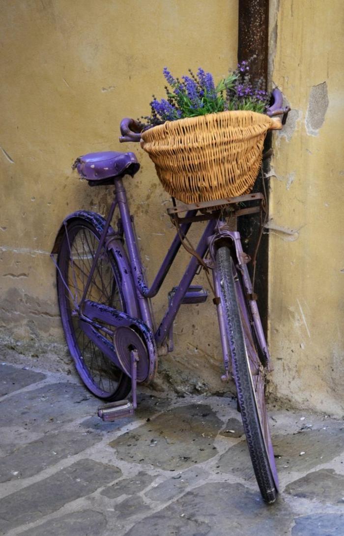 velosiped-v-sadu-2