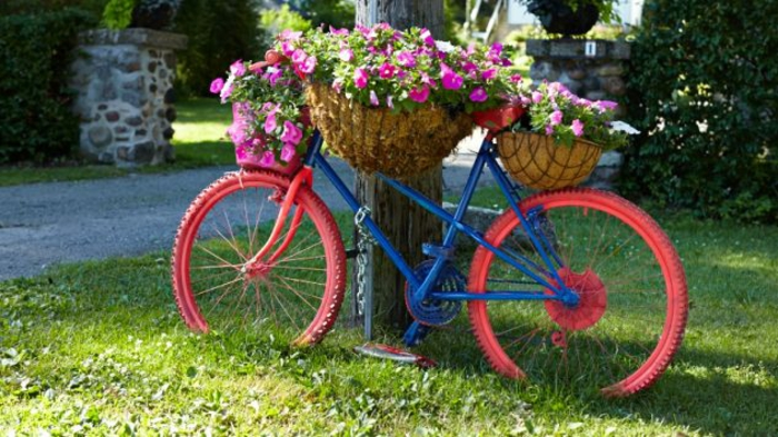 velosiped-v-sadu-8