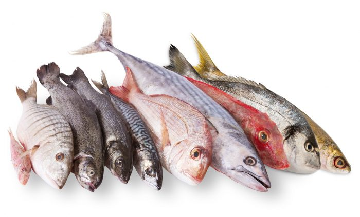 Когда разрешается употреблять рыбные продукты