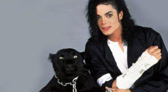 Миниатюра к статье Майкл Джексон провел свадебный обряд с маленьким мальчиком