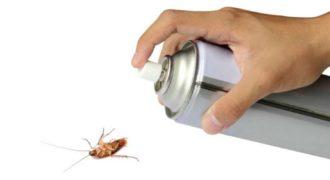 Миниатюра к статье Самые быстрые и эффективные способы избавления от насекомых в квартире