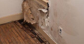 Миниатюра к статье Как навсегда избавиться от сырости в квартире и доме