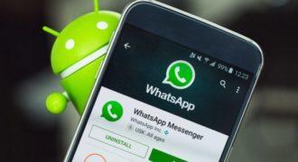 Миниатюра к статье 10 полезных уловок для пользователя WhatsApp