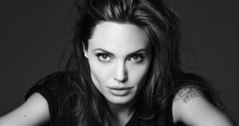 Миниатюра к статье Секреты красоты и стройности Анджелины Джоли