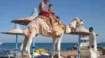 Миниатюра к статье Скоро откроют Египет для российских туристов?