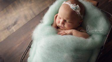 Миниатюра к статье Нежные шерстяные объятия: фотографы новорожденных открывают для себя мир шерсти