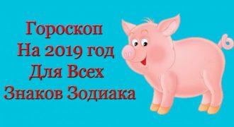 Миниатюра к статье Точный гороскоп на 2019 год по знакам зодиака и по году рождения