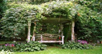 Миниатюра к статье Уютное место для отдыха в саду (60 фото)
