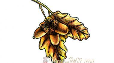 Миниатюра к статье Как нарисовать дубовые листья с желудями
