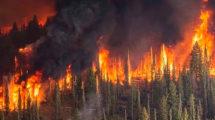 Миниатюра к статье Названа причина пожара в Сибири