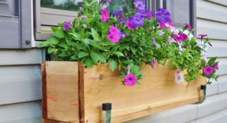 Миниатюра к статье 16 гениальных советов для создания собственного сада на небольших площадях