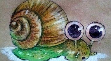 Миниатюра к статье Как нарисовать улитку карандашом — пошаговый мастер-класс