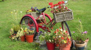 Миниатюра к статье 12 творческих идей для сада с использованием велосипеда