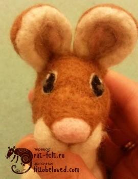 13-mouse-eye17