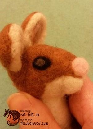 17-mouse-eye4