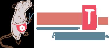 Логотип сайта Валяние из шерсти для начинающих и поделки из фетра